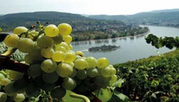 k_Highlights der Mosel